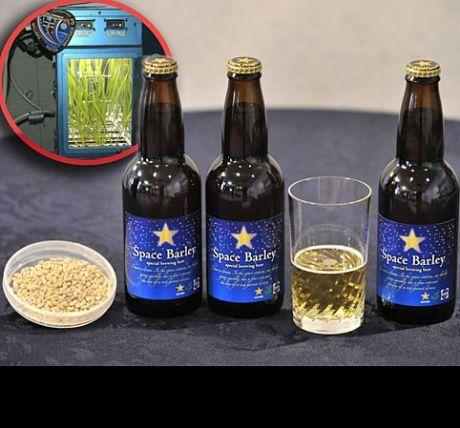 Cerveja feita de cevada cultivada na Estação Espacial Internacional